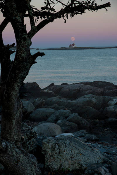 Photograph - Moon Rise Over New Castle by Gary Lengyel