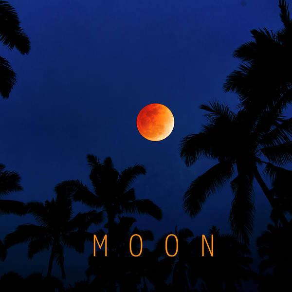 Blood Moon Wall Art - Photograph - Moon. by Sean Davey
