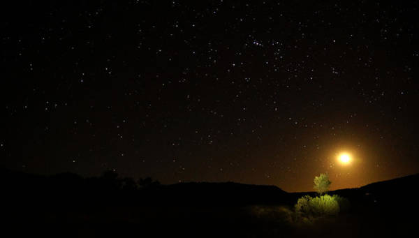 Photograph - Moon Set Over Palm Valley by Paul Svensen