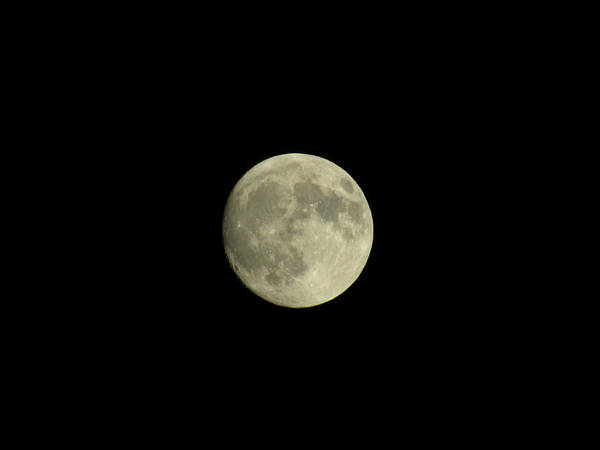 Photograph - Moon Shot 4 by Robert Knight