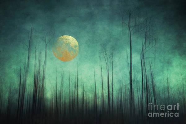 Wall Art - Photograph - Moon Silence by Priska Wettstein
