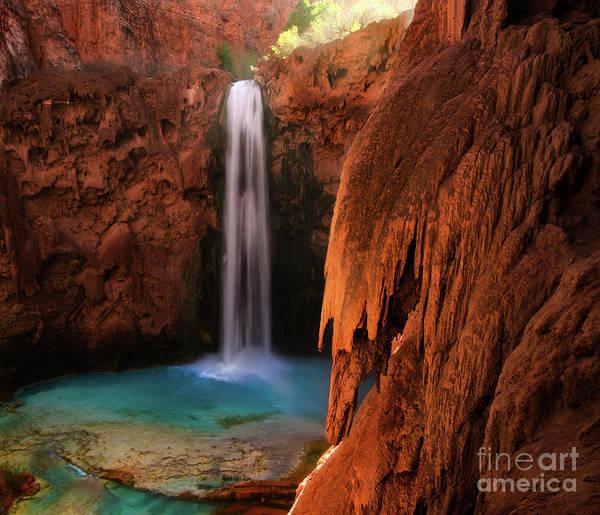 Wall Art - Photograph - Mooney Falls Havasupai by Bob Christopher