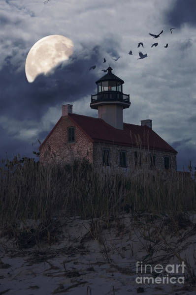 Photograph - Moonlight At East Point by Debra Fedchin