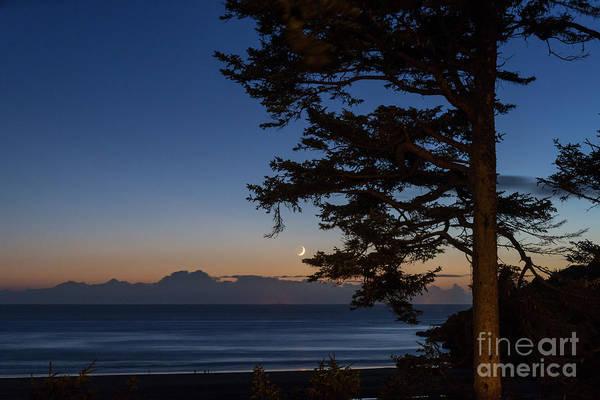 Photograph - Moonlight At The Beach by Paul Quinn