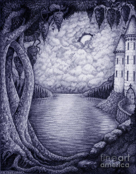 Nocturnal Drawing - Moonlight by Debra A Hitchcock