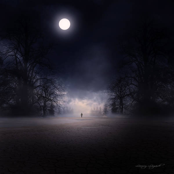 Gloomy Wall Art - Photograph - Moonlight Journey by Lourry Legarde