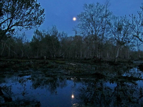 Photograph - Moonlight Over The James by Digital Art Cafe