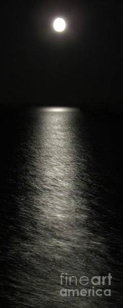 Photograph - Moonlight Reflection by Barbara Henry