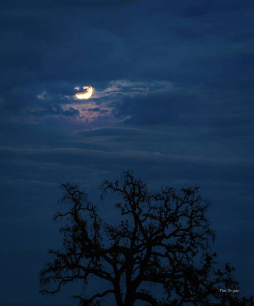 Photograph - Moonlight Through A Blue Evening Sky by Tim Bryan