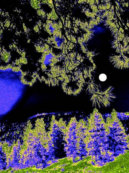 Pine Valley Digital Art - Moonlit High Country by Will Borden