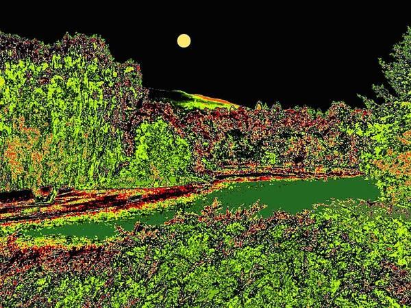 Park Bench Digital Art - Moonlit Kaloya Park by Will Borden