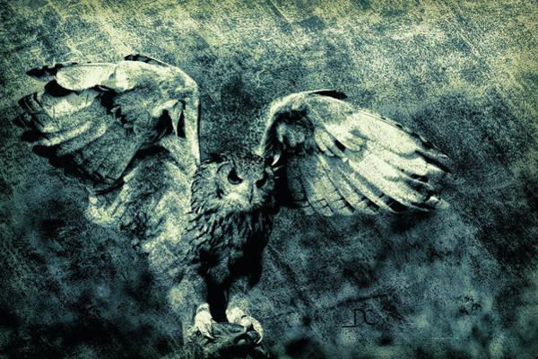 Digital Art - Moonlit Owl by Diane Chandler