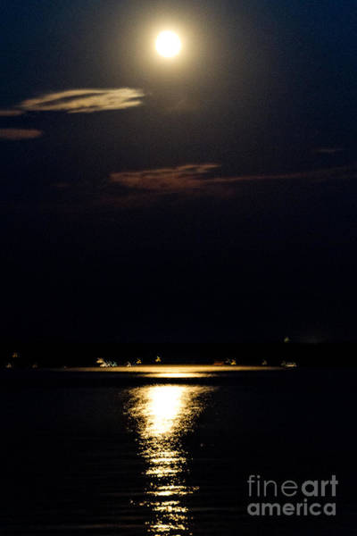 Photograph - Moonlit Seneca Lake by William Norton