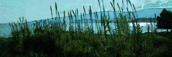 Digital Art - Moonlit Shore by Gina Harrison