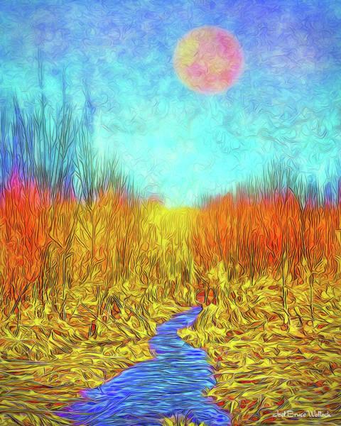 Moonlit Wilderness - Colorado Stream In Boulder County Art Print
