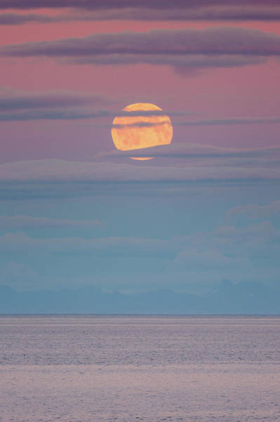 Photograph - Moonrise by Alex Conu