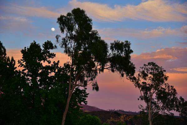 Strawberry Hills Wall Art - Photograph - Moonrise At Sunset 1 by Linda Brody