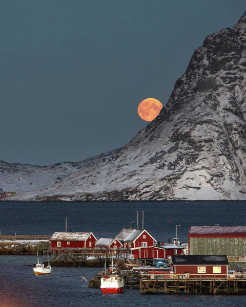 Photograph - Moonrise In Reine by Alex Conu