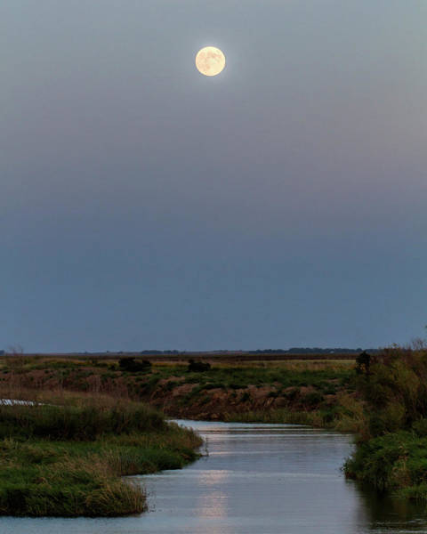 Photograph - Moonrise Over Cheyenne Bottoms -01 by Rob Graham