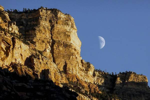 Photograph - Moonrise Over Grand Canyon by NaturesPix