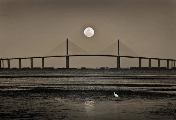 Photograph - Moonrise Over Skyway Bridge by Steven Sparks