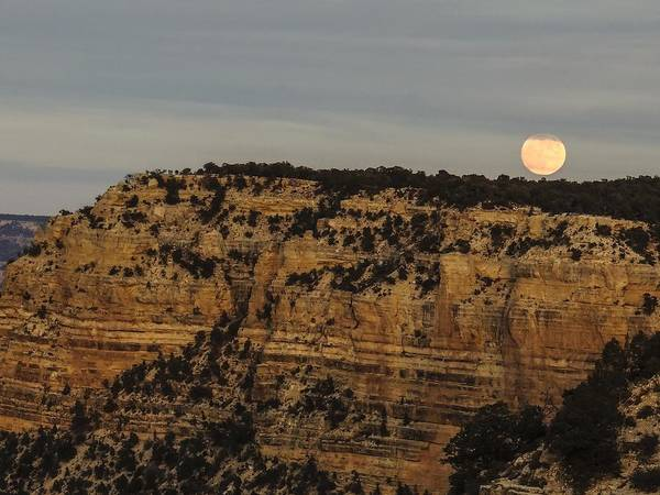 Photograph - Moonrise Over Yaki Point by NaturesPix