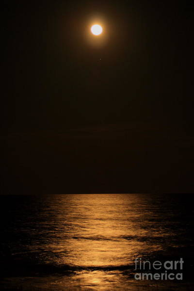 Photograph - Moonrise by Pat Moore