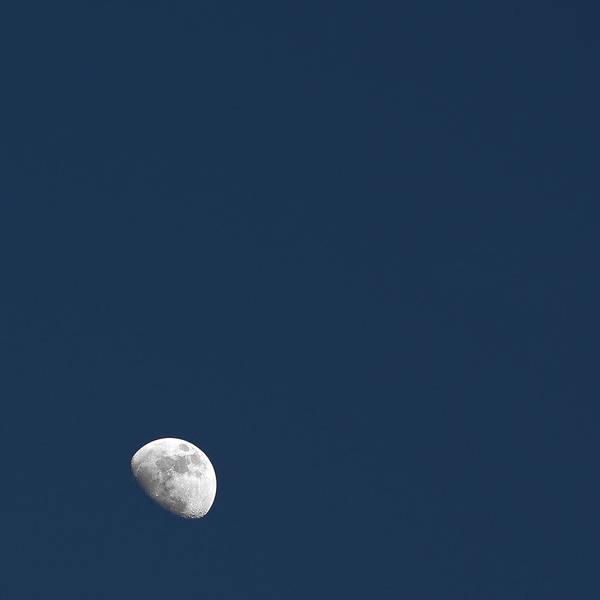 Photograph - Moonrise by Ryan Heffron