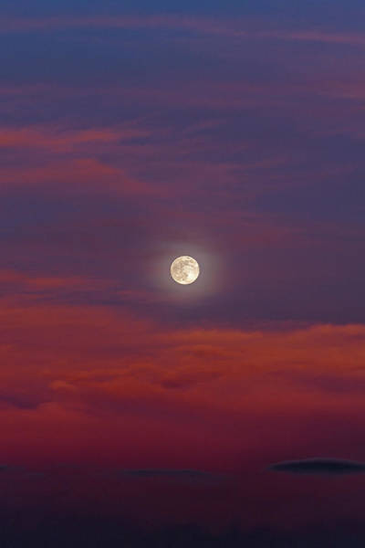 Photograph - Moonrise, Sunset by Jason Coward