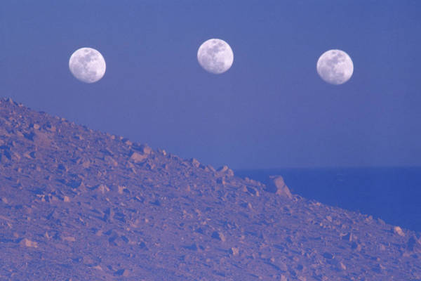 Wall Art - Photograph - Moons And Dunes by Soli Deo Gloria Wilderness And Wildlife Photography