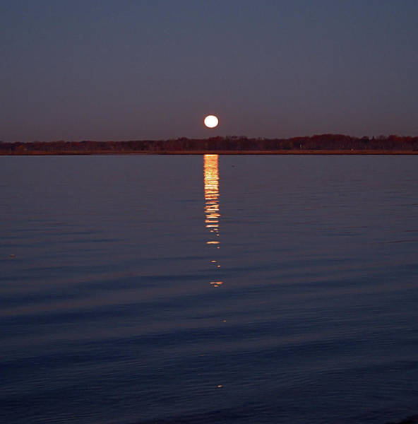 Photograph - Moonset I I I by Newwwman