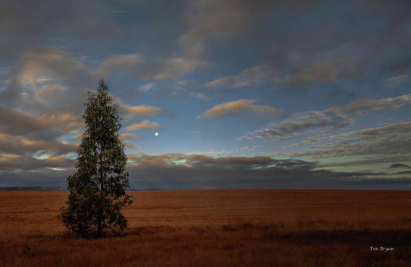 Photograph - Moonset  In A Large Morning Sky by Tim Bryan