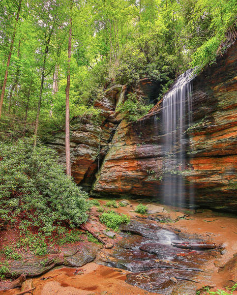 Photograph - Moore Cove Falls - Pisgah National Forest by Donnie Whitaker