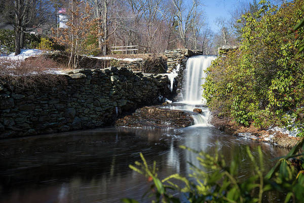 Photograph - Moore State Park 3 by Brian Hale