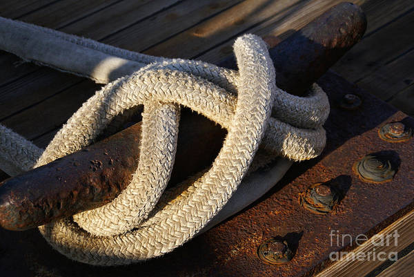 Photograph - Mooring Rope Made Fast by Linda Shafer