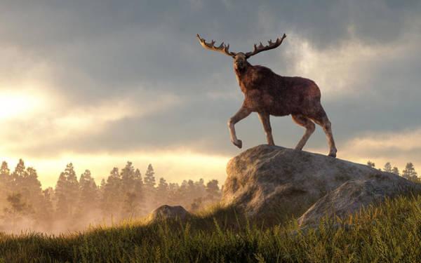 Wall Art - Digital Art - Moose At Dawn by Daniel Eskridge