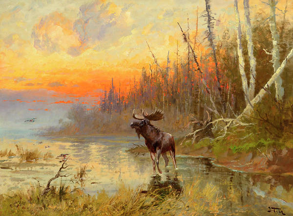 Wall Art - Painting - Moose At Sunset by John Fery