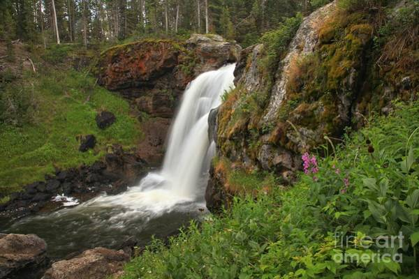 Photograph - Moose Falls Plunge by Adam Jewell