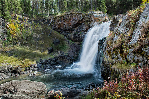 Photograph - Moose Falls by Scott Read