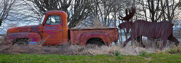 Wall Art - Photograph - Moose Follows Truck Panorama by Bill Cannon