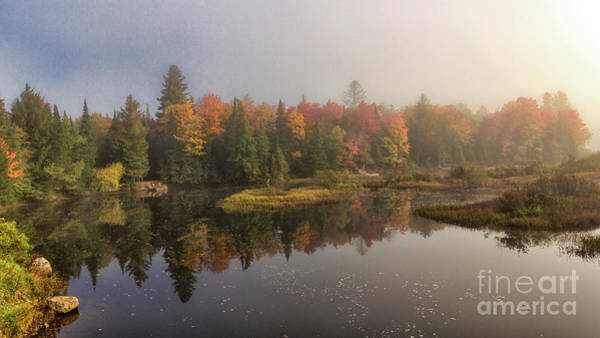 Photograph - Moose River Morning by Rod Best