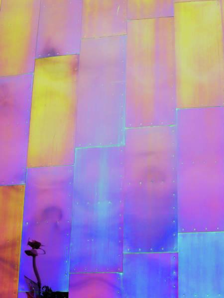 Photograph - Mopop Reflections 2 by Rick Locke