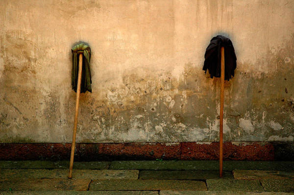 Photograph - Mops by Harry Spitz