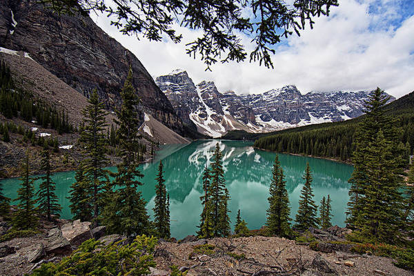 Photograph - Moraine Lake by Joe Paul