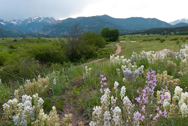 Photograph - Moraine Park Landscape by Cascade Colors