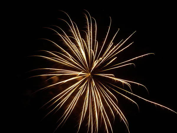 Photograph - More Fireworks - 5 by Jeffrey Peterson