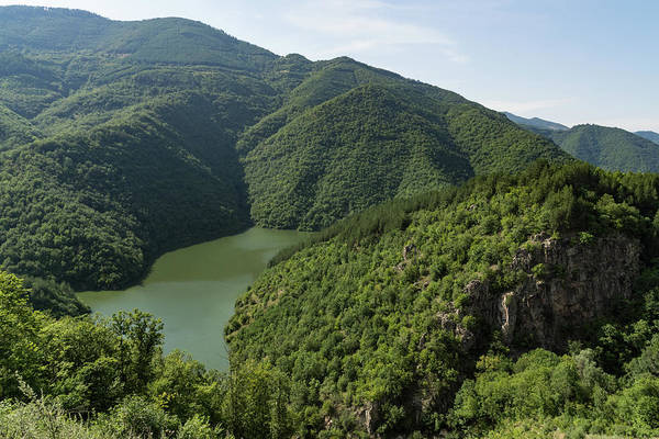 Photograph - More Than Fifty Shades Of Green - Secluded Lake In The Mountains by Georgia Mizuleva