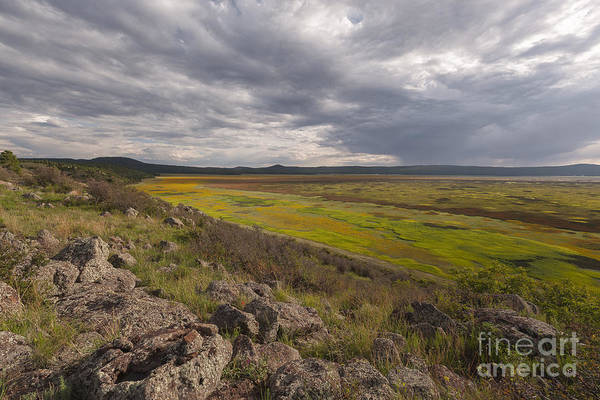 Photograph - Mormon Lake by Richard Sandford
