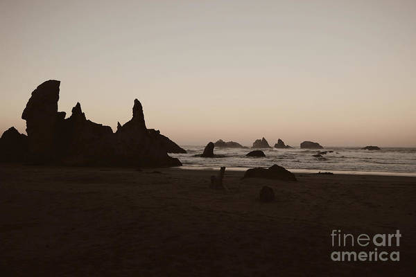 Photograph - Morning Along Shore by Jenny Revitz Soper