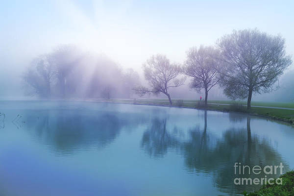 Photograph - Morning by Ariadna De Raadt